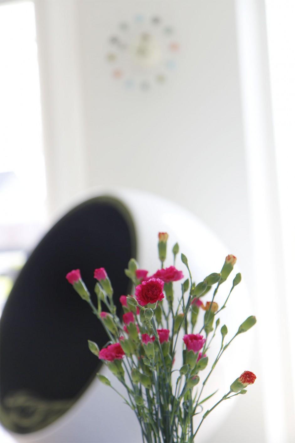blomma med bollstol